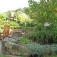 """""""Offene Gartenpforte"""" lockte viele Besucher nach Wilkenroth Pressemeldung 1. September 2011: """"Der überzeugte Gartenfreund kommt notfalls in Gummistiefeln"""", lacht Gartenbesitzer Carsten Ingwersen. Trotz zum Teil ungünstiger Wetterverhältnisse nutzten sogar Besucher […]"""