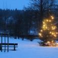 Liebe Wilkenrother Senioren und Alle über 60, wir möchten Sie herzlich zu unserem diesjährigen Weihnachtskaffee am 4. Dezember ab 15:00 Uhr einladen. Für dieses Jahr haben wir mit Abstimmung des […]