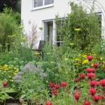 Thiele 150x150 Wilkenrother Gartentage 2012 letztmalig am Wochenende: