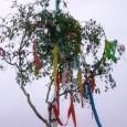 Maibaum mit Beleuchtung  Das traditionelle Eiersingen fand auch in diesem Jahr wieder auf dem Dorfplatz unter dem eigens hierfür aufgestellten Maibaum statt. In diesem Jahr jedoch haben sich Jan […]