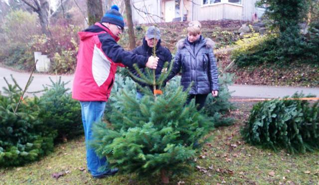2. Wilkenrother Weihnachtsbaumverkauf am 12. Dezember
